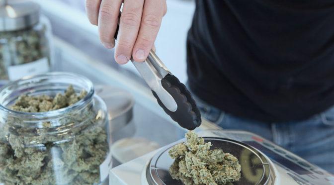 Cannabis medicinal, ¿los nuevos bitcoins?