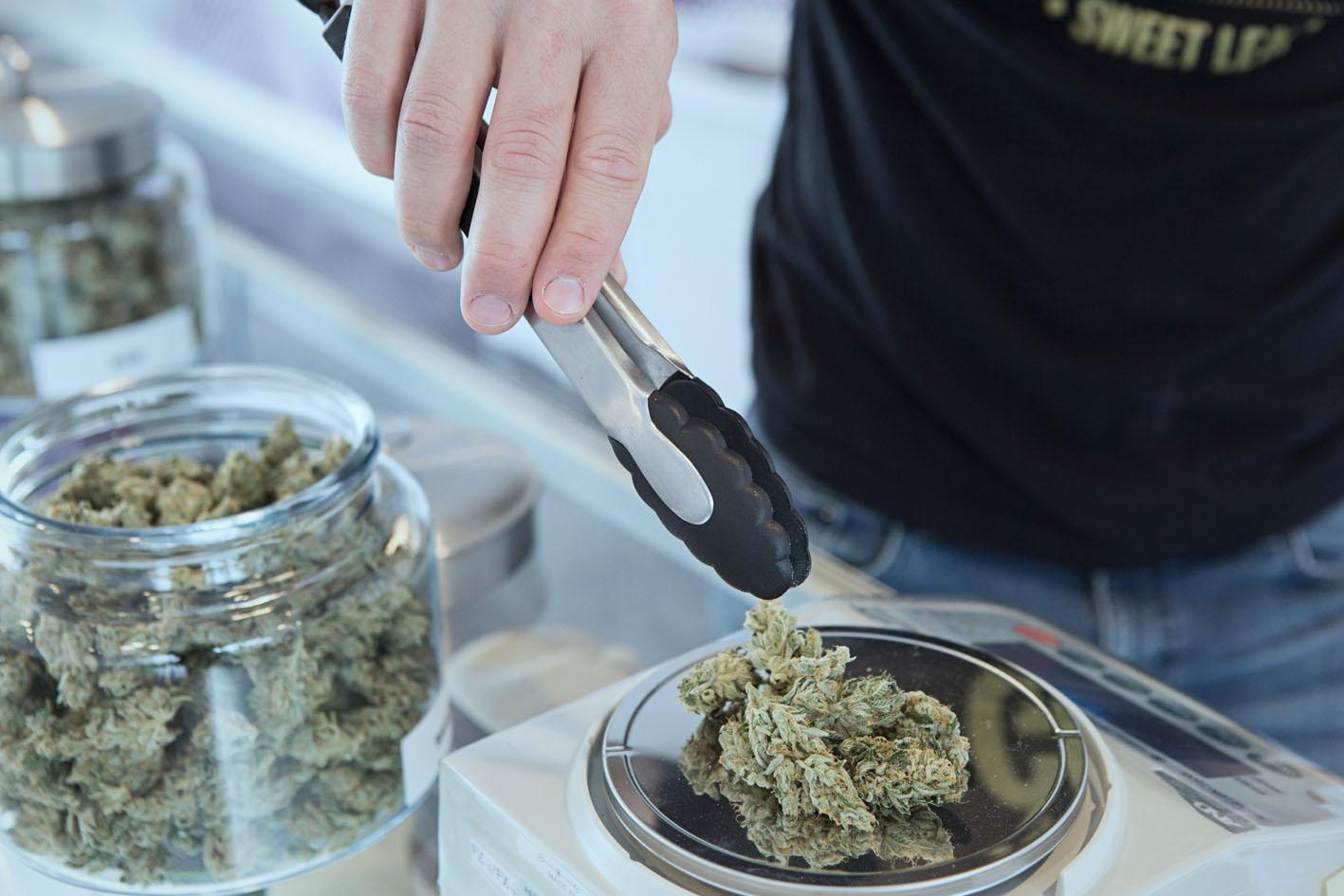 pesando marihuana
